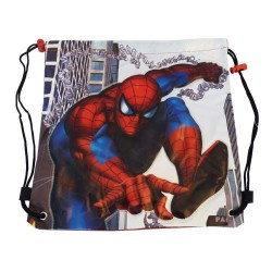 Bag pool Spiderman