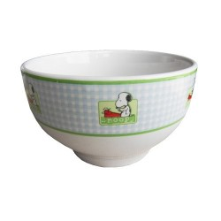 Snoopy green Bowl