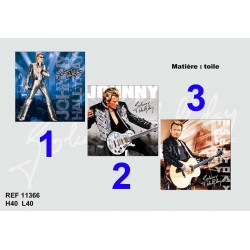 Johnny Hallyday 40 CM canvas