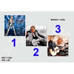 Johnny Hallyday 40 CM tela