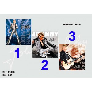 Canvas johnny hallyday 40 cm la boutique des toons for Miroir johnny hallyday