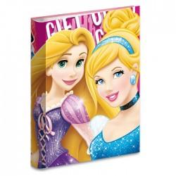 Libro A4 princesa Disney 34 CM