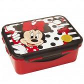 Caja 17 CM Disney Princess snack