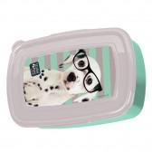 Lonchera de perro estudio mascotas 18 CM