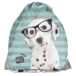 Bolsa de piscina perro estudio mascotas 38 CM