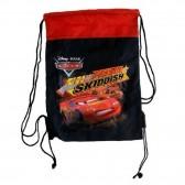 Bag pool Cars Racer 43 CM
