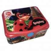 Boite gouter Ladybug 14 CM