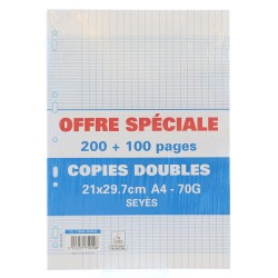 Double copies 300P A4 perforated Seyès