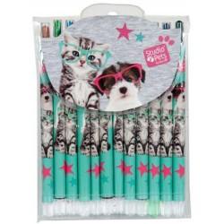 Sacchetto di 12 matite di cera STUDIO PETS
