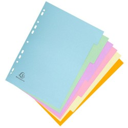 EXACOMPTA high card A4 6 positions pastel color spacer