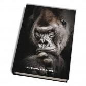 Animali Agenda 17 CM