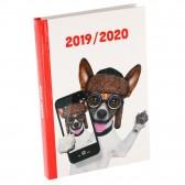 Animals Agenda 17 CM