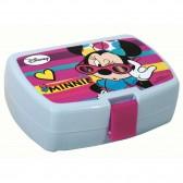 Minnie Gafas de sol 16 CM caja de gustos