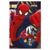 Plaid polaire Spiderman 100 x 140 cm - Couverture Marvel