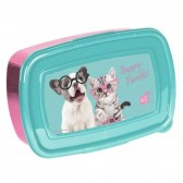 Kitten Box Studio Pets 18 CM