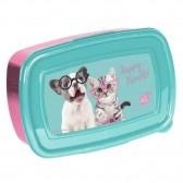 Kitten Box Studio Mascotas 18 CM