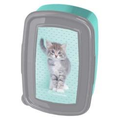 Kitten 18 CM Rachaelhale Taste Box