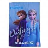Agenda Reine des neiges 17 CM