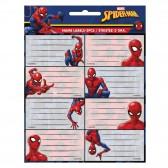 Lot de 16 étiquettes Spiderman