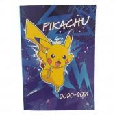 Programa Pokémon 17 CM