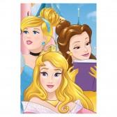 Plaid polaire Princesses Disney 140x100cm - Couverture