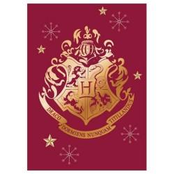 Polarplaid Harry Potter 100 x 140 cm - Decke