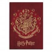 Harry Potter Polar Plaid 100 x 140 cm - HP Cover