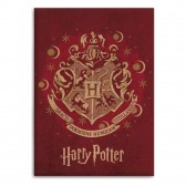 Plaid polaire Harry Potter 100 x 140 cm - Couverture HP