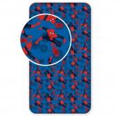 Drap housse coton Spiderman GO 1 personne 90x200 cm