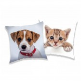 Hundekissen und Katze 40 CM
