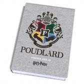 Agenda Harry Potter Poudlard 17 CM 2021-2022