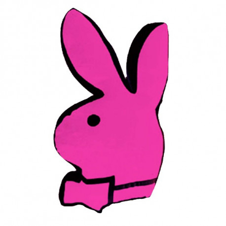 Coussin Playboy Bunny Rose