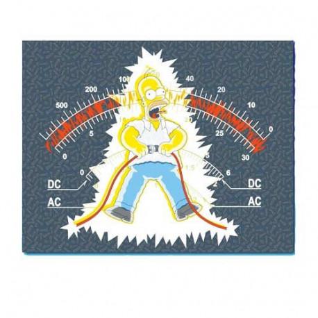 Plaid polar Homer electrocutar