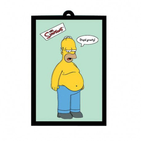Mirror Homer Simpsons Gravity