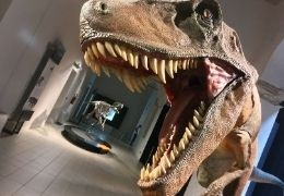 Why are dinosaurs so popular with children?